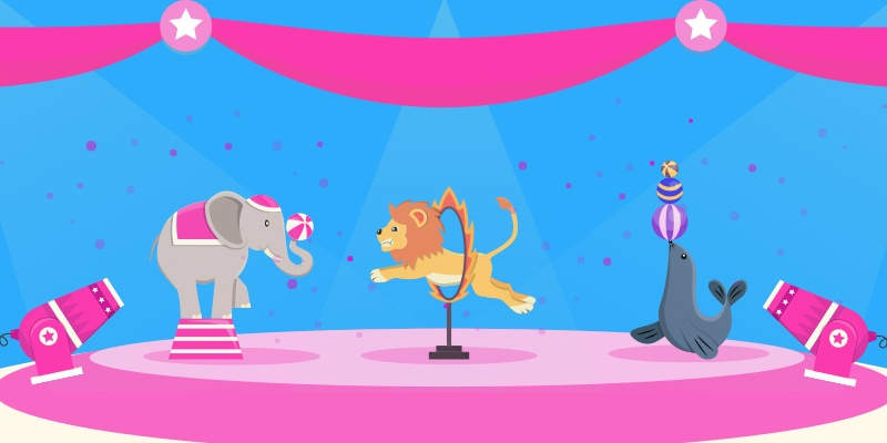 A circus act with a range of marketing tricks and tools.